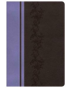 Bible KJV Rainbow Study Imitation Leather Brown Lavender Index