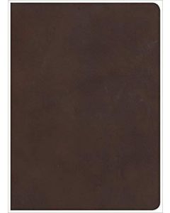 Bible HCSB Study Leather Brown Index